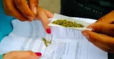 Día mundial por la legalización de la marihuana