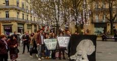 Mil grullas para pedir paz y justicia por Ayotzinapa