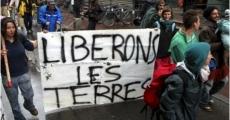 Liberemos las tierras en Avignon Francia
