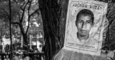 Ayotzinapa: 43 con vida ¡YA!