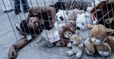 Protesta contra el maltrato animal en los circos